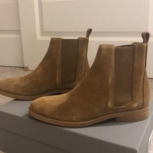 Everlane Modern Chelsea Boot (suede)